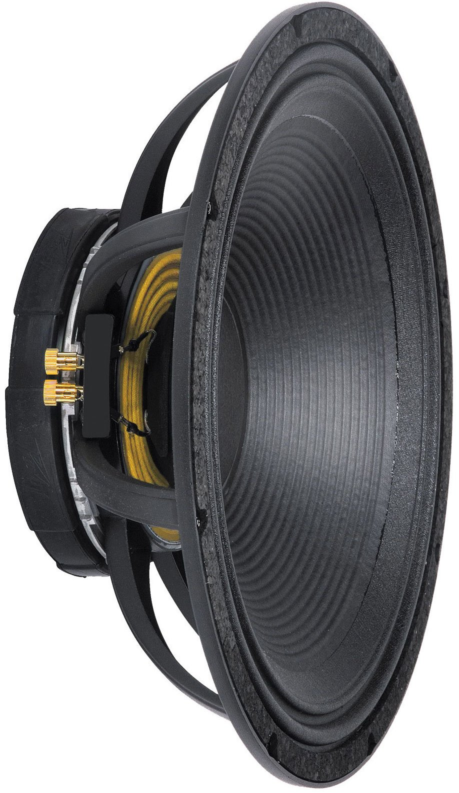 peavey-18in-low-rider-subwoofer.jpeg